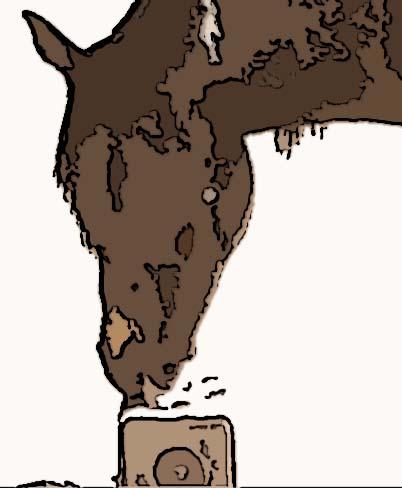 horse and salt