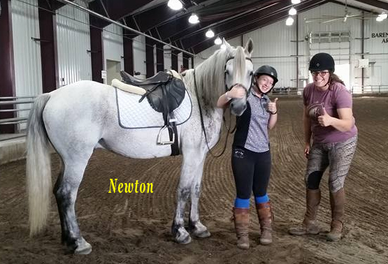 newton-wrisky-ranch